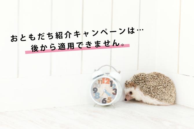 銀座カラーの友達紹介キャンペーンは後から適用することはできるの?