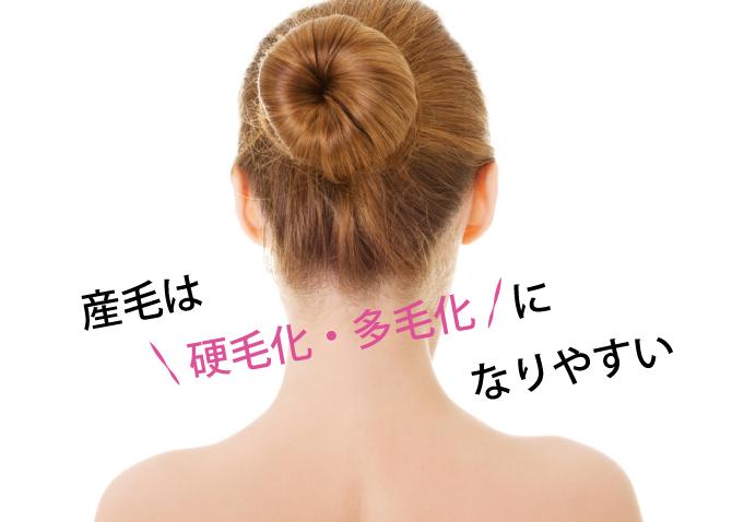 産毛は硬毛化・多毛化になりやすい