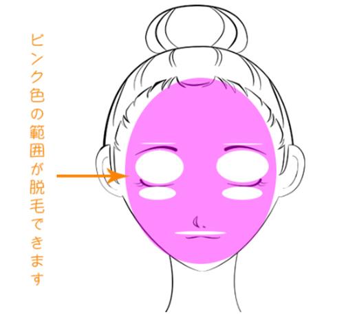 銀座カラーで顔脱毛ができる部位をイラストで解説