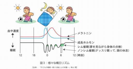 <h3>「早寝・早起き・朝ごはん」</h3> 「睡眠」は、身体の発育成長、学力面、心の安定などに影響を与えます。 下の表を参考にしていただけるとわかるように、夜眠りにつき、深い睡眠に落ちたとき成長ホルモンが分泌されます。 ※成長ホルモン:身体の成長を促し脂肪を分解するホルモン物質のこと。