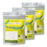 3袋(300粒×3袋/約3ヶ月分)