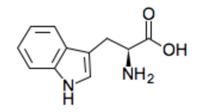 トリプトファンの化学構造式